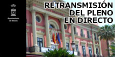 Retransmisión del Pleno Municipal en Directo